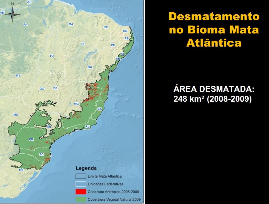 MMA relata que desmatamento foi quase a zero em três biomas